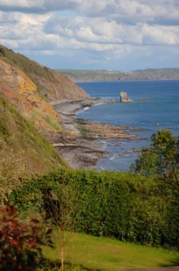 Cornwall_Cliffs_Trees