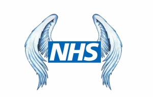 nhs-wings