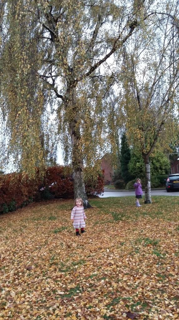 autumn-leaves-school-run-spookymrsgreen