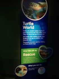 Turtle World SEA LIFE Manchester