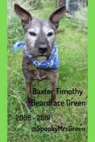 Baxter Timothy Beardface Green