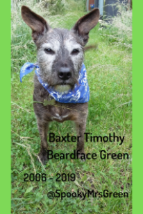 Baxter Timothy Beardface Green
