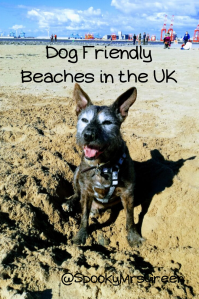 Dog Frindly Beaches in the UK