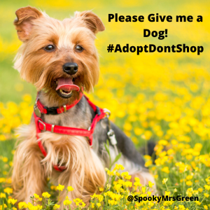 Please Give me a Dog! #AdoptDontShop