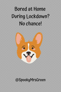 Bored at Home During Lockdown_ No chance! (1)